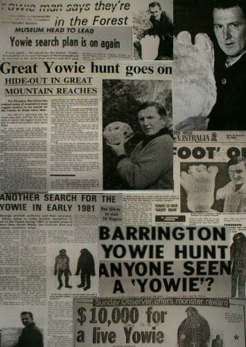 Newspapaer article - Yowie